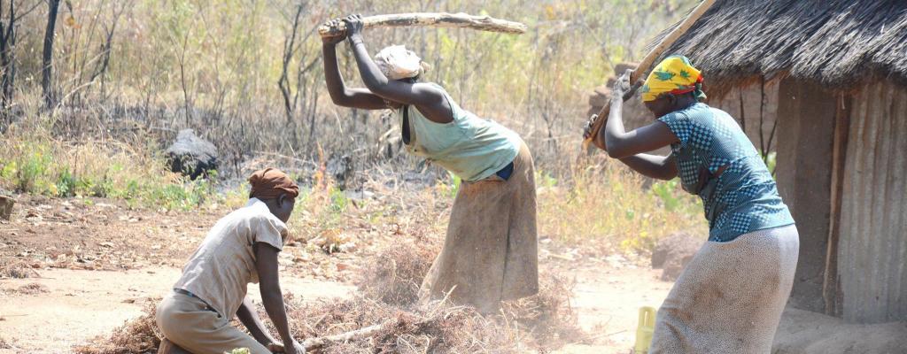 Women pounding Soghum